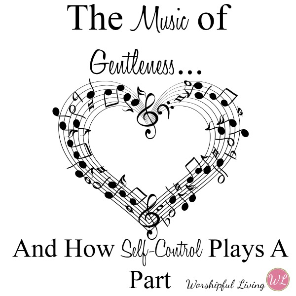 We need to have the melody of gentleness playing in our lives- which means self -control  has to be a main part of the song. Play List to play in your home, and link up for bloggers!