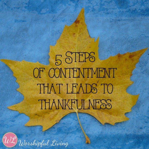 5 Steps Of Contentment That Leads to Thankfulness- For You and Your Kids