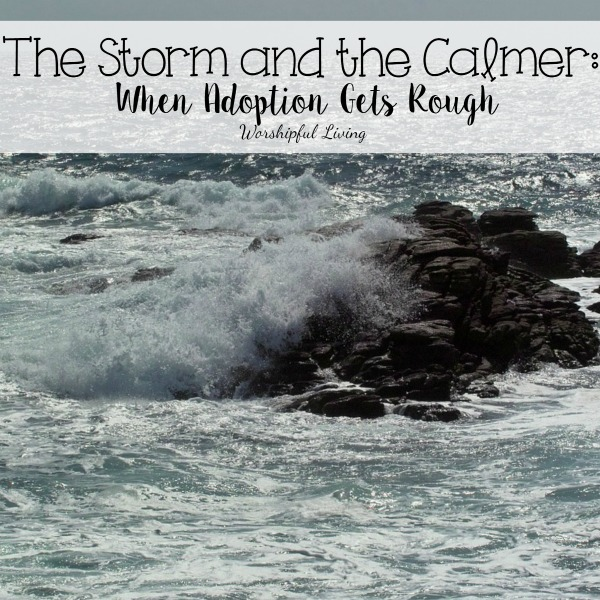 The Storm And The Calmer (When Adoption Gets Rough)