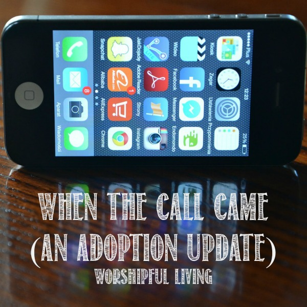 When The Call Came (An Adoption Update)