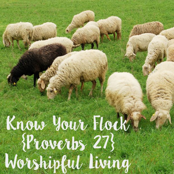 Know Your Flock Proverbs 27 - Worshipful Living