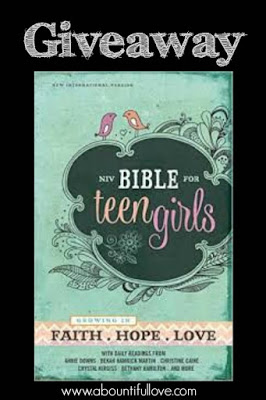 NV Bible for Teen Girls