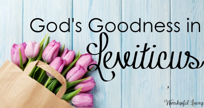 God's Goodness in Leviticus
