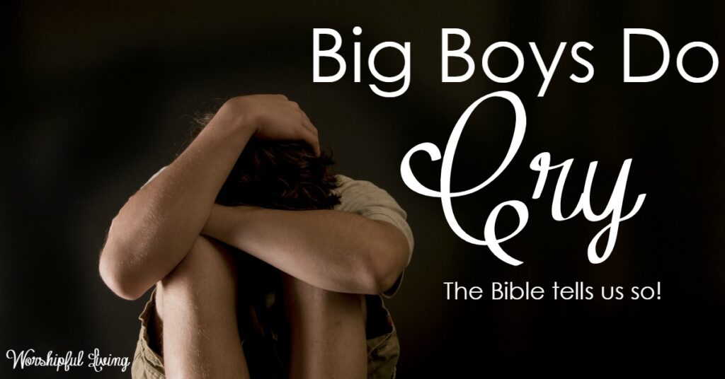 As parents of boys, we are at an impasse. We want to raise men - but our culture has the definition all wrong. Let's raise our boys to be men! Here are three tips, based on God's Word and the life of Joseph - that will be an encouragement and a tool for you!